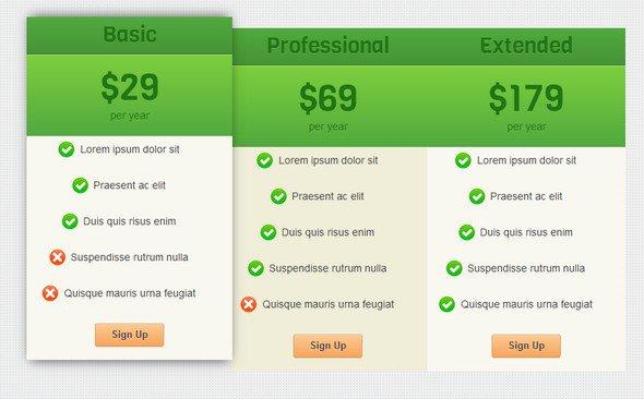 best-html-css-pricing-matrix-template-04