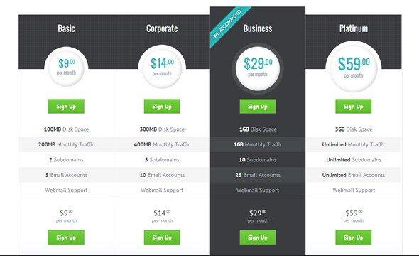 best-html-css-pricing-matrix-template-09