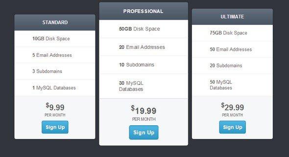 best-html-css-pricing-matrix-template-12