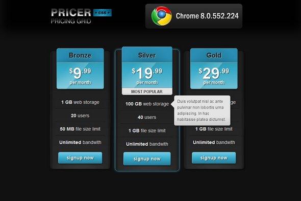 best-html-css-pricing-matrix-template-14