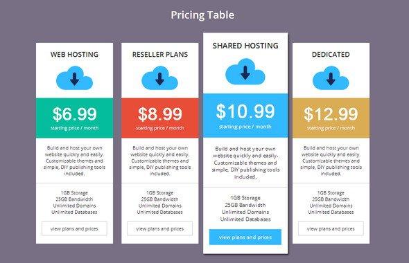 best-html-css-pricing-matrix-template-18